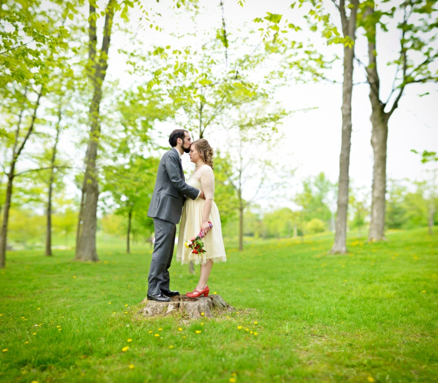 brenizer, stitch, waterloo park, bokeh panorama, wedding, nikon, d7000, af-s 85mm f/1.8G